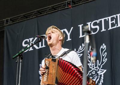 Greenfield Festival 2017